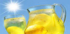 el limón - las sustancias medicinales