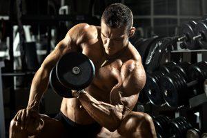 La Construcción De Músculo Consejos De Entrenamiento Para Principiantes