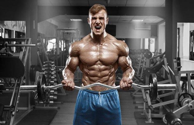 Los beneficios de la masa muscular: Desde la pérdida de peso a la inmunidad