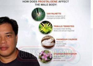 Prostalgene – comentarios – composición – ingredientes – como tomarlo