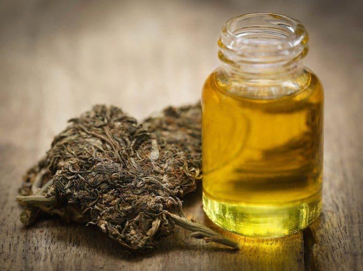 CBD Oil - comentarios - composición - ingredientes - como tomarlo - como se toma