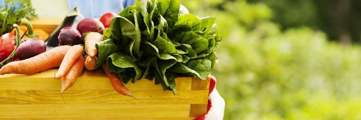 Alimentos orgánicos: Lo que Usted Necesita Saber